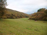 2013-10-26_Franzenheim-Runde04