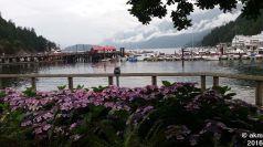 2016-07-11_VancouverHandy46