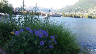 2017-05-21_LuganoTag2_Handy06